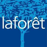 Laforet FElix Faure